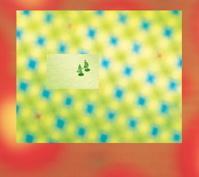 carre-vert-CD.jpg